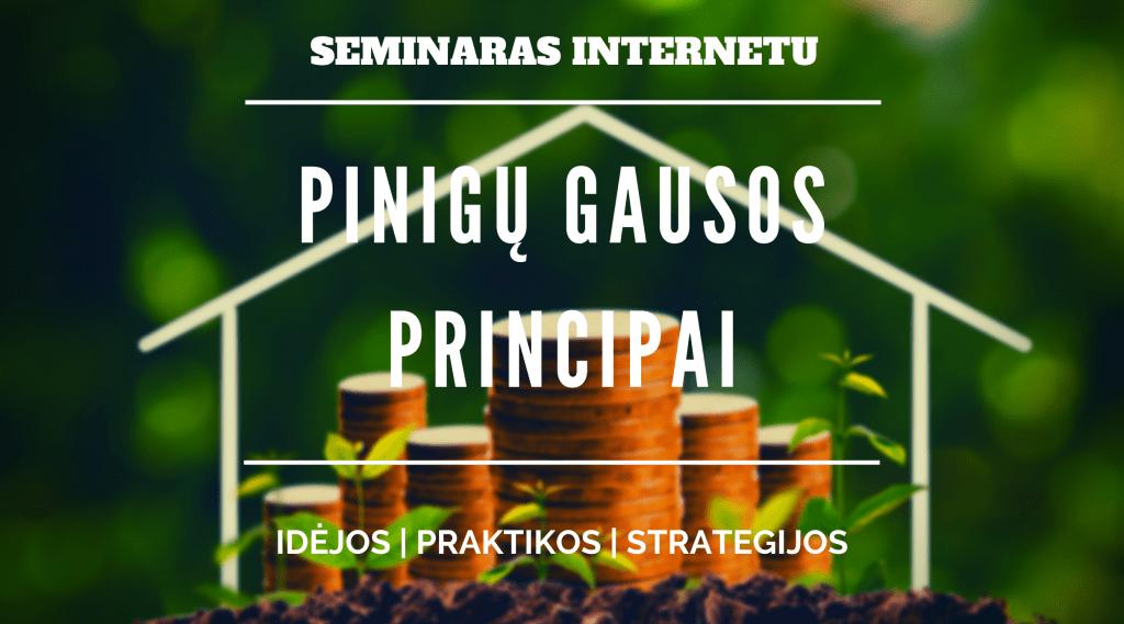 pinigų gausos principai seminaras online